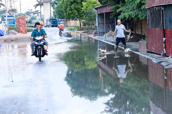 Hà Nội: Ngập úng quanh năm, người dân thả vịt ngay trên đường khu đô thị - Ảnh 5.