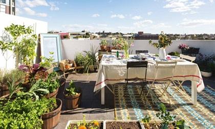 9 khu vườn trên sân thượng vừa đẹp, vừa dễ làm cực hợp với nhà nhỏ