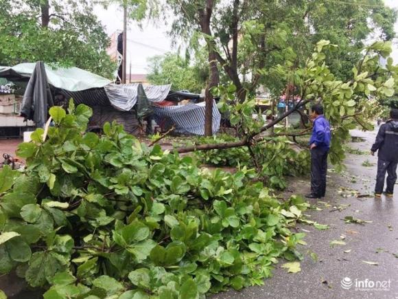 Ảnh: Hà Tĩnh, Nghệ An, Thanh Hóa tan hoang sau bão số 2 - 1