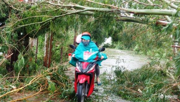 Ảnh: Hà Tĩnh, Nghệ An, Thanh Hóa tan hoang sau bão số 2 - 11