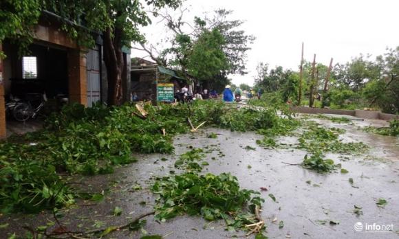 Ảnh: Hà Tĩnh, Nghệ An, Thanh Hóa tan hoang sau bão số 2 - 13