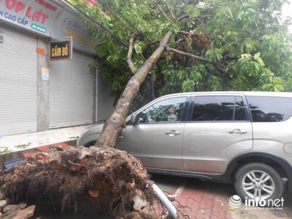 Ảnh: Hà Tĩnh, Nghệ An, Thanh Hóa tan hoang sau bão số 2 - 17