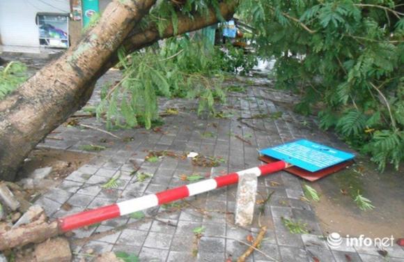 Ảnh: Hà Tĩnh, Nghệ An, Thanh Hóa tan hoang sau bão số 2 - 18
