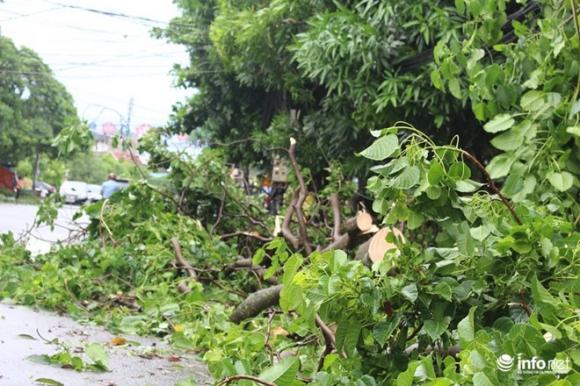 Ảnh: Hà Tĩnh, Nghệ An, Thanh Hóa tan hoang sau bão số 2 - 3