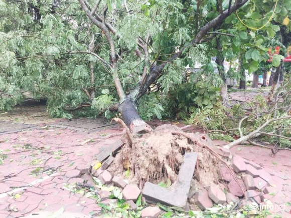 Ảnh: Hà Tĩnh, Nghệ An, Thanh Hóa tan hoang sau bão số 2 - 4