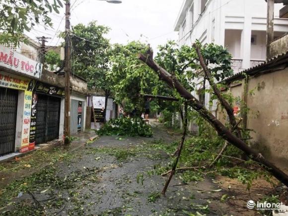 Ảnh: Hà Tĩnh, Nghệ An, Thanh Hóa tan hoang sau bão số 2 - 5