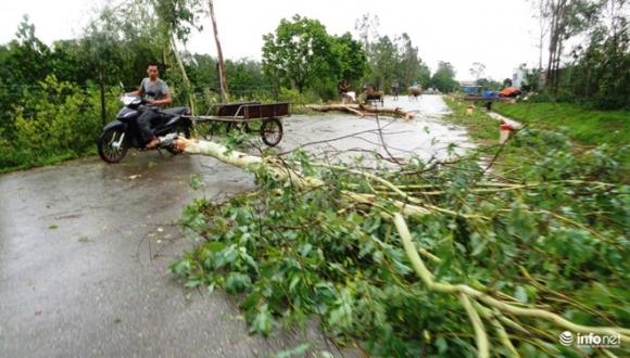 Ảnh: Hà Tĩnh, Nghệ An, Thanh Hóa tan hoang sau bão số 2 - 7