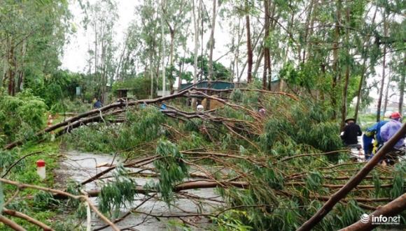 Ảnh: Hà Tĩnh, Nghệ An, Thanh Hóa tan hoang sau bão số 2 - 8