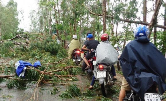 Ảnh: Hà Tĩnh, Nghệ An, Thanh Hóa tan hoang sau bão số 2 - 9