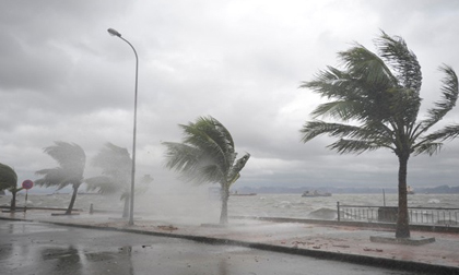 Tin thời tiết hôm nay (25.7): Tin khẩn cấp về cơn bão số 4
