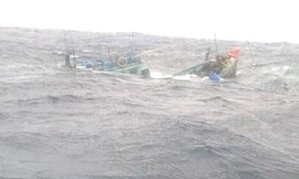 Chìm tàu ngoài khơi xa, chưa thể tiếp cận 5 thuyền viên gặp nạn