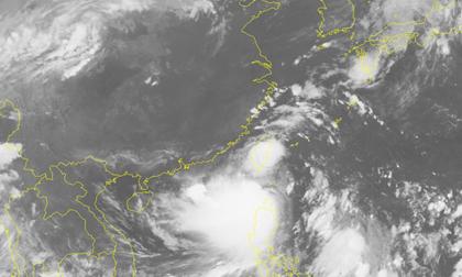 Bão mới Hato gió giật cấp 11 đã đi vào Biển Đông, thành cơn bão số 6