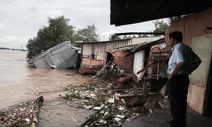 Sạt lở kinh hoàng, nhiều căn nhà trôi xuống sông