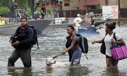 Mỹ: Hơn 450.000 người tại Texas cần hỗ trợ sau thảm họa