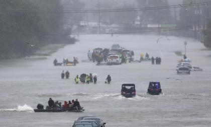 Tấm ảnh ám ảnh của nạn nhân thiệt mạng trong bão Harvey