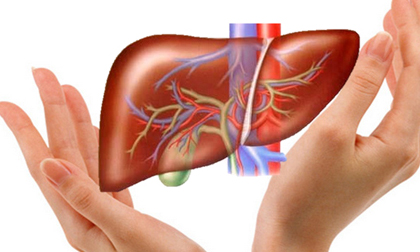 Thải mọi độc tố trong gan chỉ chưa tới 1 ngàn đồng nhờ những thực phẩm kiếm đâu cũng có