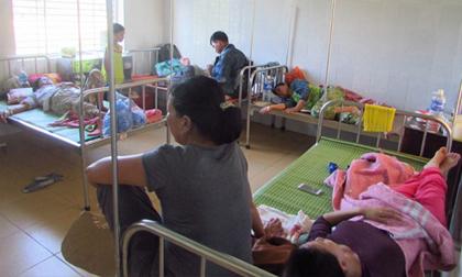 Ăn bánh giầy nhiễm khuẩn, 41 người nhập viện sau đám cưới