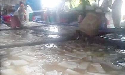Chủ cơ sở tử vong thương tâm dưới hồ quậy thạch dừa