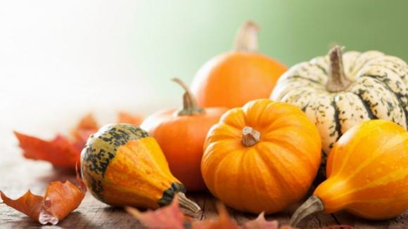 Thực phẩm lành mạnh bạn nên ăn vào mùa thu này - Ảnh 2.