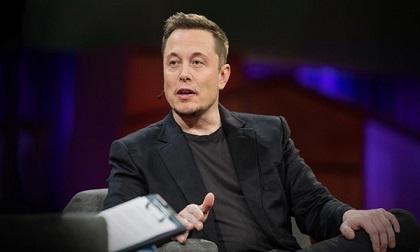 Quy tắc 'liều ăn nhiều' đưa Warren Buffett, Elon Musk dẫn đầu giới tỷ phú