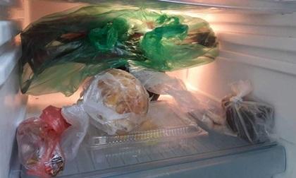 Vì sao các chuyên gia nói rằng cho thực phẩm vào túi ni lông rồi nhét tủ lạnh là bạn đang giết cả nhà