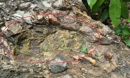 Bí ẩn dấu chân người kỳ lạ trên đá và lời nguyền ngàn năm