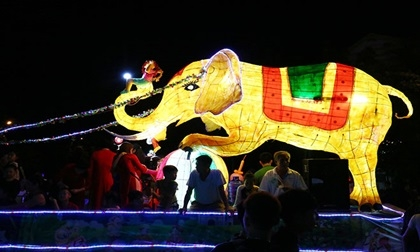 Lên Tuyên Quang ngắm voi, rùa 'khủng' ra phố chơi Trung thu