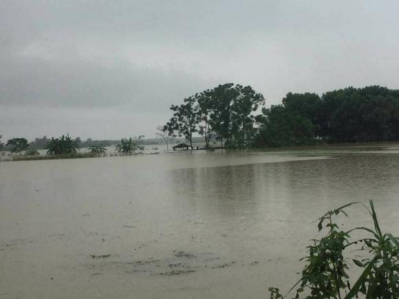 Hà Nội: Vỡ đê sông Bùi 2, hàng trăm nhà dân chìm trong biển nước - 3
