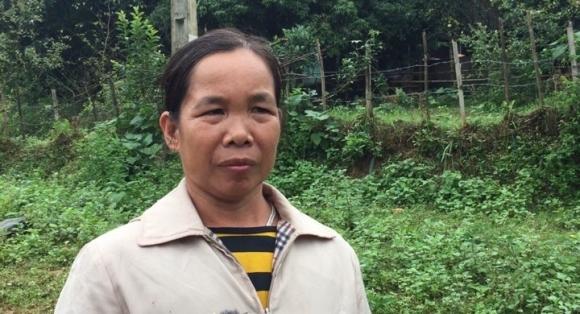 Bà Đinh Thị Trịnh chưa hết bàng hoàng trước sự việc kinh hoàng.