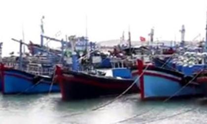 Điều tra vụ người chết bị dìm dưới biển bằng bê-tông