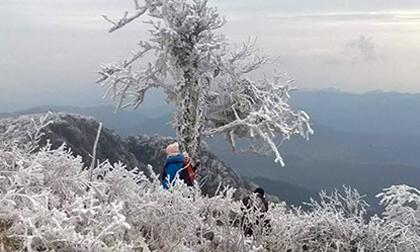 Tin không khí lạnh mới nhất: Hà Nội tiếp tục rét 14 độ C, đỉnh Fansipan vẫn 0 độ