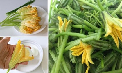 Thanh nhiệt giải độc, sáng mắt giờ các món ăn từ hoa bí đỏ