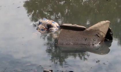 Phát hiện thi thể người phụ nữ mắc kẹt trong chiếc ghế dưới lòng kênh