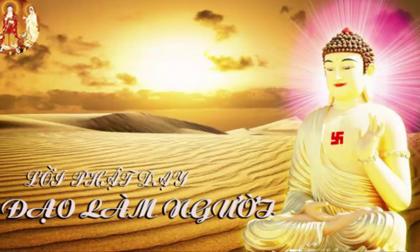 Phật dạy về đạo làm người để cả đời an nhàn hạnh phúc, có hậu về sau tránh mọi tai ương