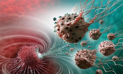 10 thực phẩm là kẻ thù không đội trời chung của tế bào ung thư