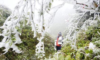 Tin mới thời tiết 6/01: Đón không khí lạnh mạnh, Hà Nội sắp rét đậm 11 độ C