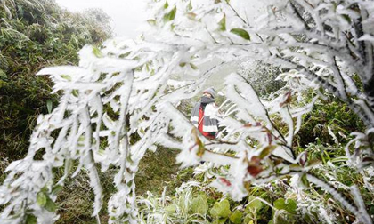 Tin không khí lạnh mới nhất: Miền Bắc tiếp tục chìm trong giá rét, Sa Pa dưới 1 độ C