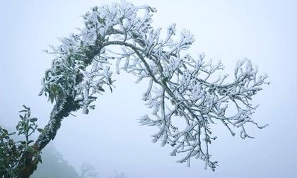 Sốc: Nước Hồ Gươm từng đóng băng, miền Bắc đang trải qua đợt rét lịch sử