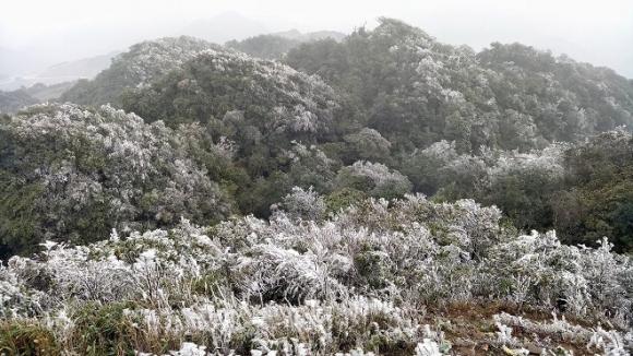 Rét khốc liệt dưới 0 độ C, băng giá phủ trắng Sa Pa và Mẫu Sơn   - 1