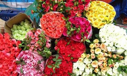 Tinh ý một chút, chị em sẽ chọn được ngay hoa hồng tươi, không ướp lạnh chơi suốt Tết