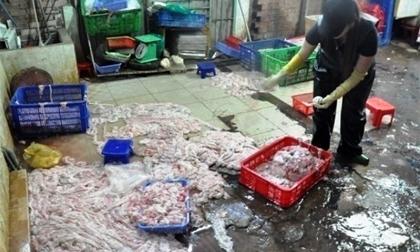 Thực phẩm Tết: Hết hồn chả lụa, giò thủ làm từ thịt bẩn ào ra chợ