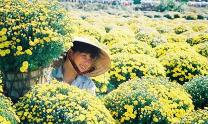 Ghé miền Tây dịp giáp Tết check-in 5 làng hoa đẹp 'quên lối về'
