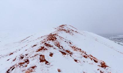 Du khách đổ xô tới sa mạc Sahara ngắm tuyết rơi