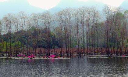 Không phải mùa lễ hội, đến chùa Hương tháng 10 mới là 'cực phẩm'