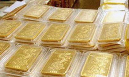 Truy tìm chủ nhân số vàng khủng 'để quên' trong bao lúa ở Bình Định