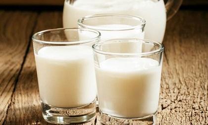 Sữa dê: Những lợi ích sức khỏe và làm đẹp siêu tốt không nên bỏ qua