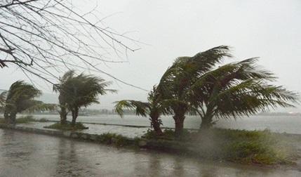 Thời tiết hôm nay 10/3: Cảnh báo gió giật mạnh cấp 8 trên vùng biển ngoài khơi