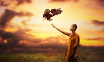 Phương pháp trả thủ cao tay nhất cho những kẻ phản bội theo lời Phật dạy, từng câu từng chữ đáng giá ngàn Vàng