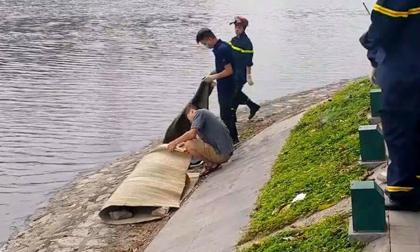 Phát hiện thi thể 2 nam sinh ở hồ trong công viên Thống Nhất - Hà Nội
