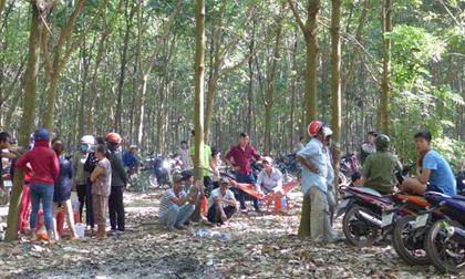 Cô gái cùng người tình bị nhóm người bắt vào rừng đánh đập, cắt tai